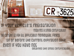 Registration Renewal CA